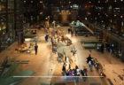 生物の進化を学ぶ!パリ国立自然史博物館「進化大陳列館」