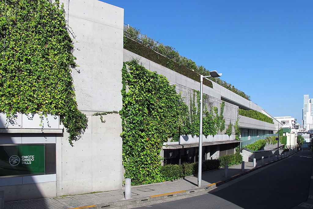 屋上・壁面緑化が進む裏通りの外観