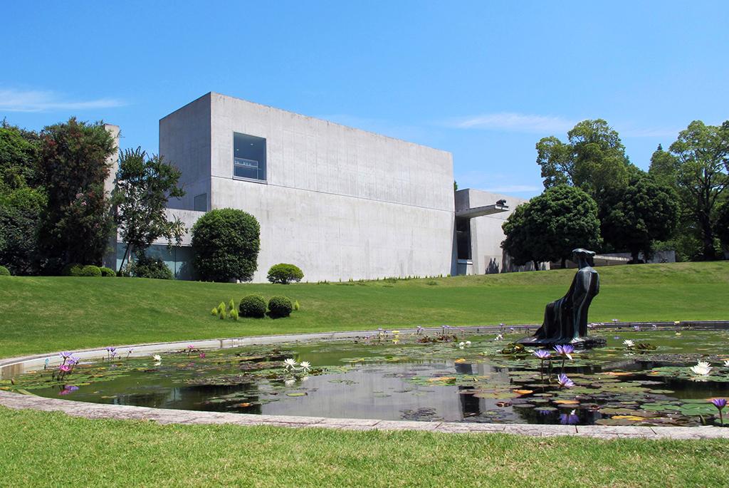 蓮池越しに望む美術館