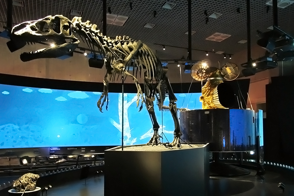 知的好奇心を刺激する人気の博物館!「国立科学博物館」