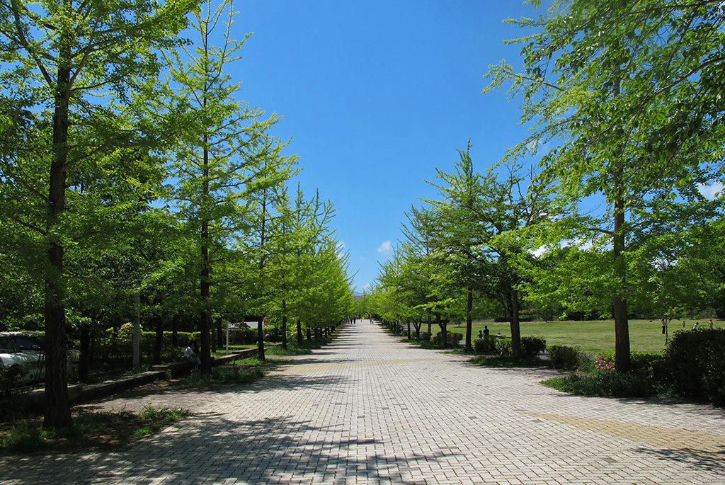 自然・スポーツ・文化を楽しむ公園「秩父ミューズパーク」