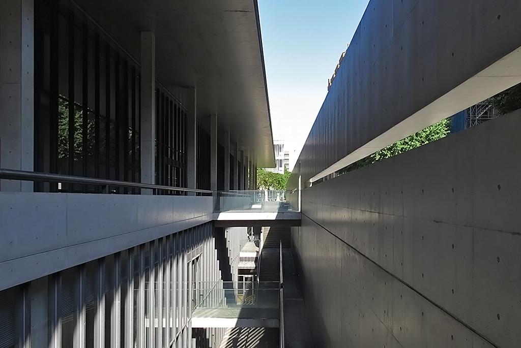 安藤忠雄らしいコンクリート壁とガラスに囲まれた空間