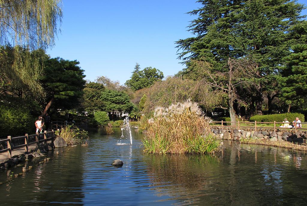 のどかな風景の日本庭園を散策