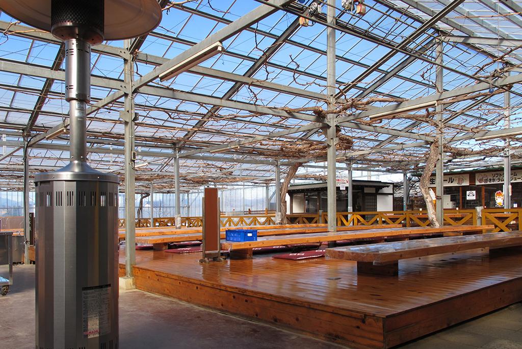 夏にはぶどうの房の屋根となるバーベキューガーデン