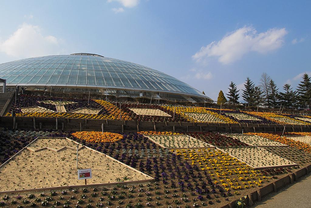 綺麗な花壇と「くだもの広場」