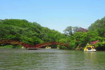 遊び・動物・自然を思い切り楽しむ!横浜「こどもの国」