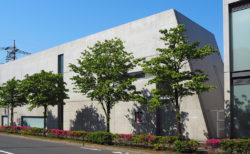 安藤建築と芸術・文化が集う仙川「安藤ストリート」