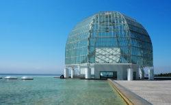 世界の海を谷口吉生が設計した「葛西臨海水族園」
