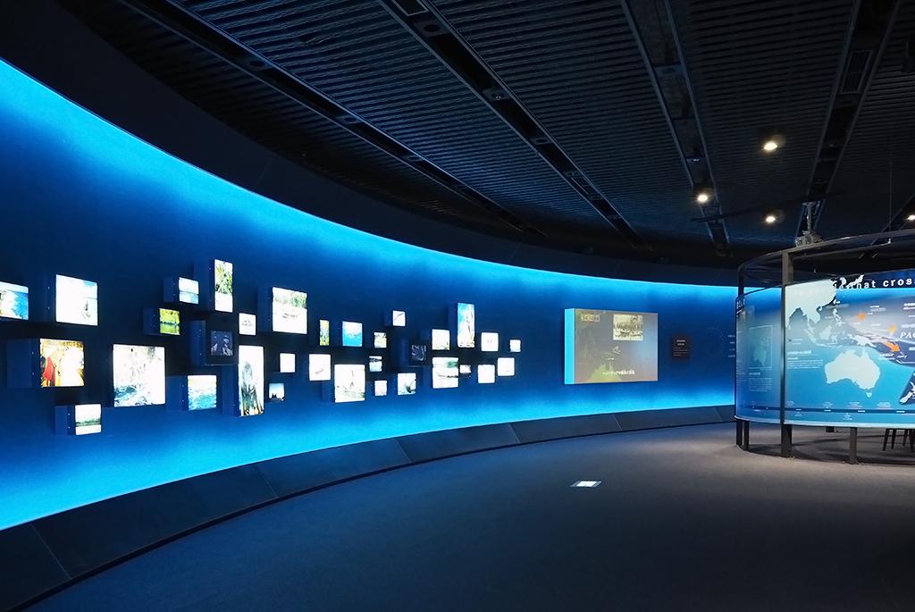 広大な海を超え太平洋の島々をつなぐ「海洋文化館」