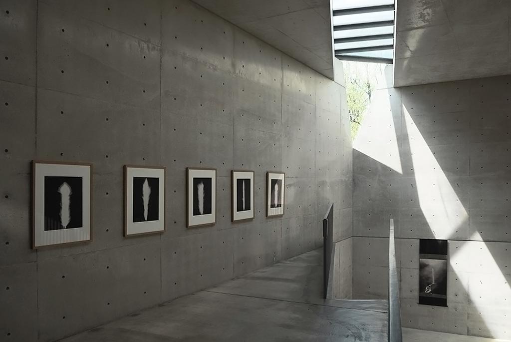自然光のみで作品を鑑賞する「光の美術館」