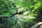 科学・アート・古民家など施設も充実した「生田緑地」