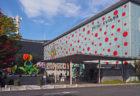 草間彌生の現在と原点に触れられる「松本市美術館」